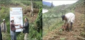 Greening of Merdada Lake